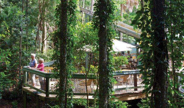 rainforest-centre-02